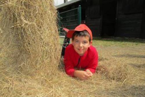 Bauernhof Kind im Heu